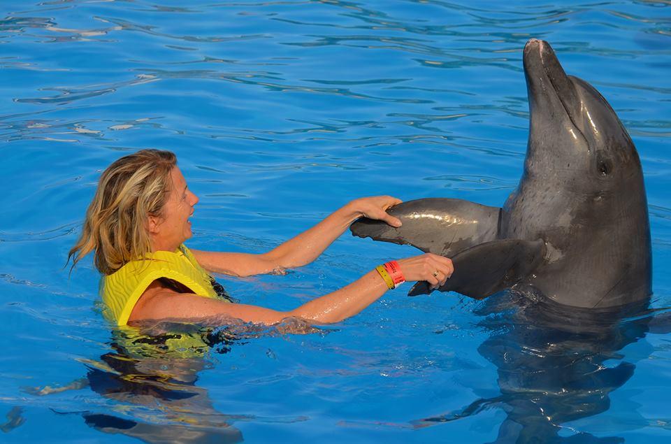 Svømma med delfinar? JA til meir moro og fanteri!